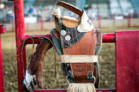 Grayslake 7-30-16 Night Rodeo