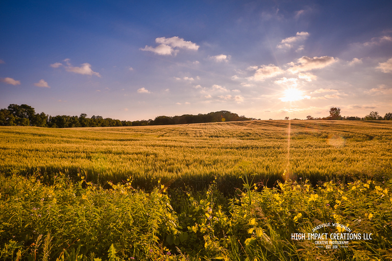 Picture a Day #136, 6-11-14 | Janesville Photographer