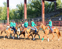 8-04-2017 Ogle County Fair Rodeo, Oregon, IL