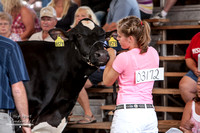 Photograph from the 2012 Rock County 4-H Fair 7-28-12