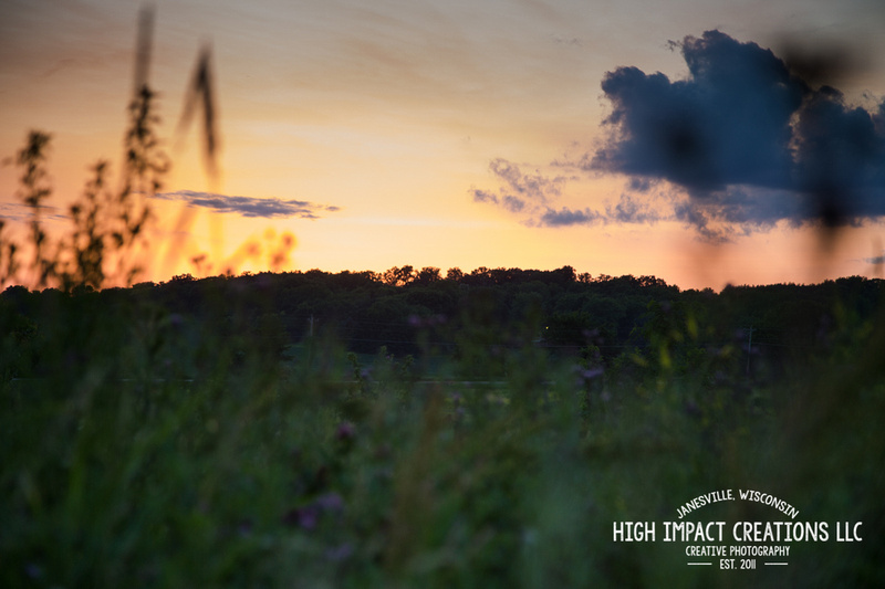 Picture a Day #145 | Janesville Photographer
